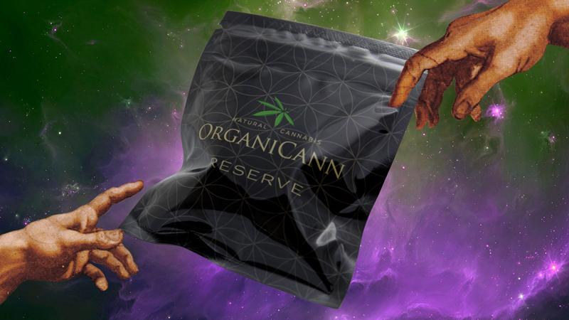 OrganiCann-JX-Body-01