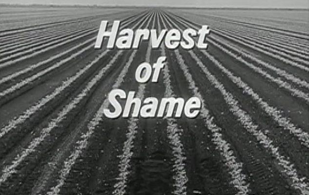 Harvest of Shame